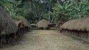 印尼叢林土著村落